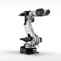 Шарнирный робот / 6-осный / для разгрузочно-погрузочных работ / упаковки
