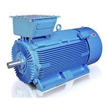Двигатель AC / асинхронный / 690V / электрически изолированный