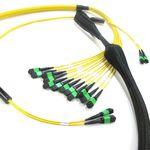 кабельный жгут оптоволокно MPO / предварительно собранный