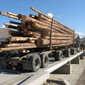 мостовые весы для грузовика