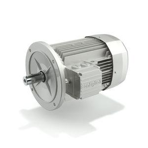 двигатель IE2