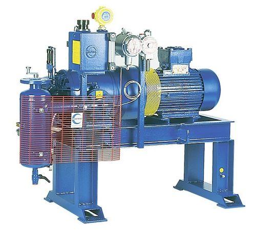 компрессор для биогаза / стационарный / с электродвигателем / лопастный