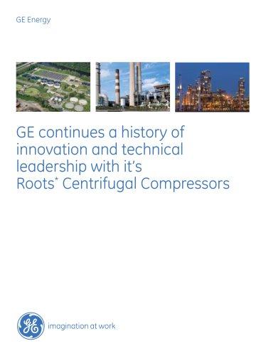 Roots* API-617 and API-672 IGCH Centrifugal Compressor