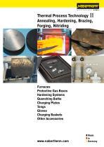 Thermal Process Technology II
