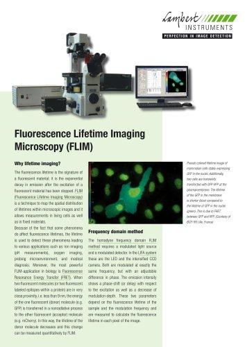 Fluorescence Lifetime Imaging Microscopy (FLIM)