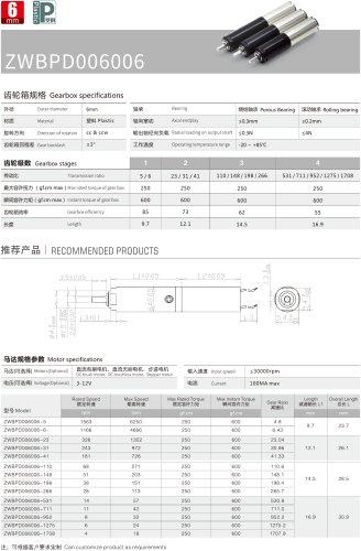 ZWBPD006006 DC Motor Series