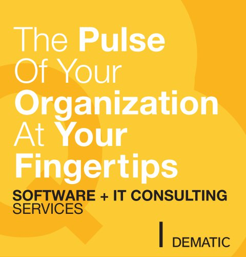 Dematic IT Consulting