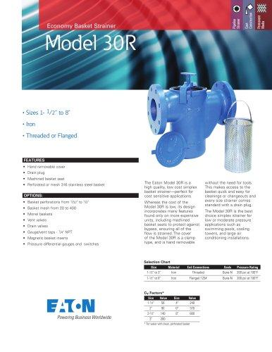 Eaton Model 30R Economy Simplex Basket Strainer
