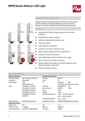WPM Series Modular LED Light