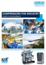 COMPRESSORS FOR INDUSTRY