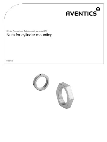 Nuts for cylinder mounting