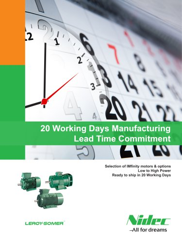 20 Working Days Manufacturing Lead Time Commitment