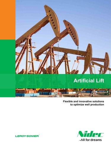 Flexible and innovative solutions to optimize well production Artificial Lift