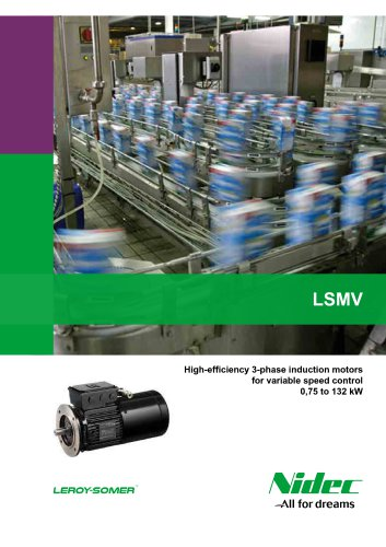 High-efficiency 3-phase induction motors for variable speed control