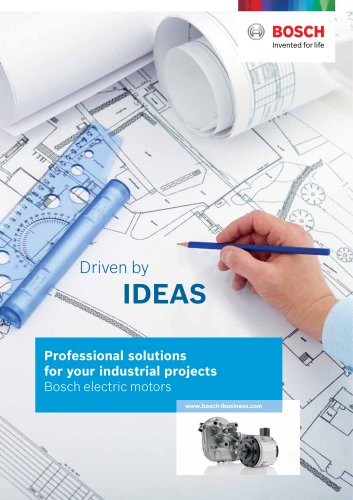 Professional solutions for your industrial projects